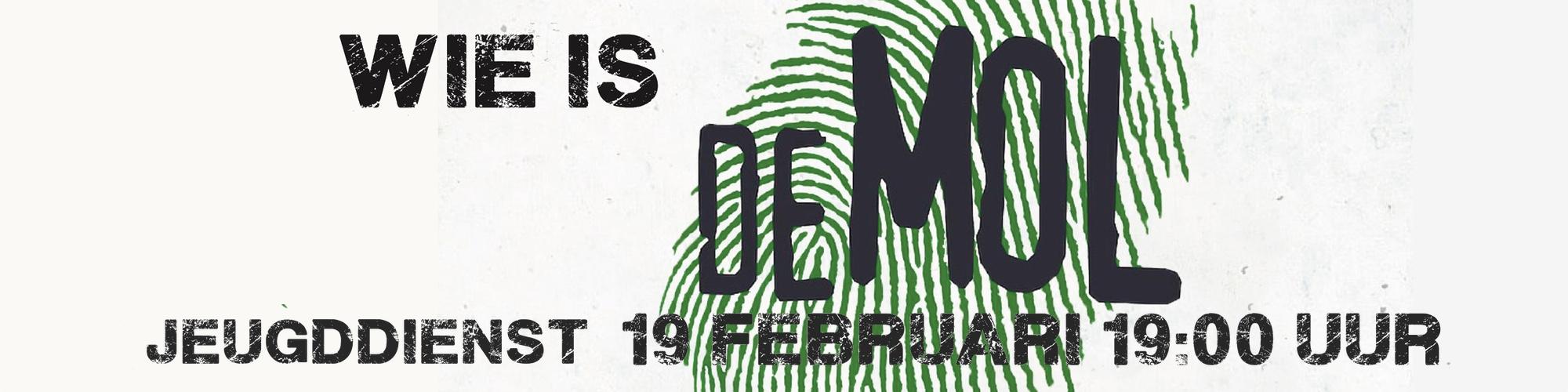 DeMol banner